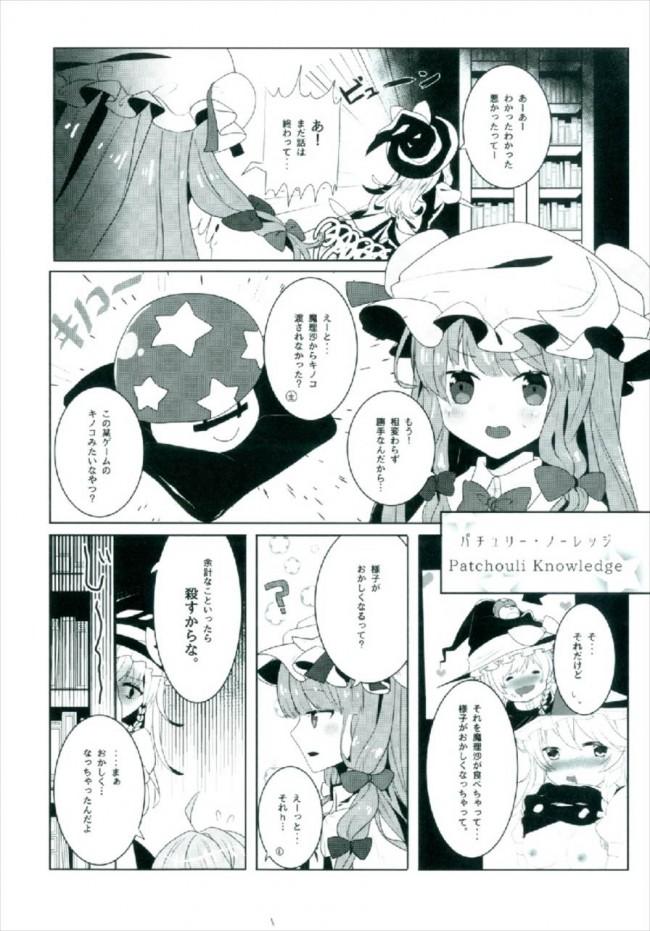 【東方 エロ漫画・エロ同人】えっちな幻想郷~パチュリーとえっちな魔法編~ (6)